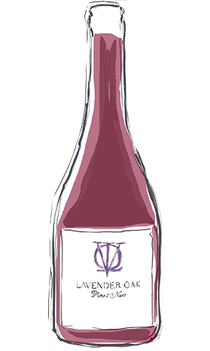 Red wine bottle illustration